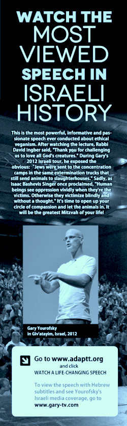 Click anywhere inside this image to watch Gary's life-changing speech